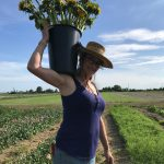 FARM JOB: LADNER, BC – River and Sea Flowers, Farm Crew