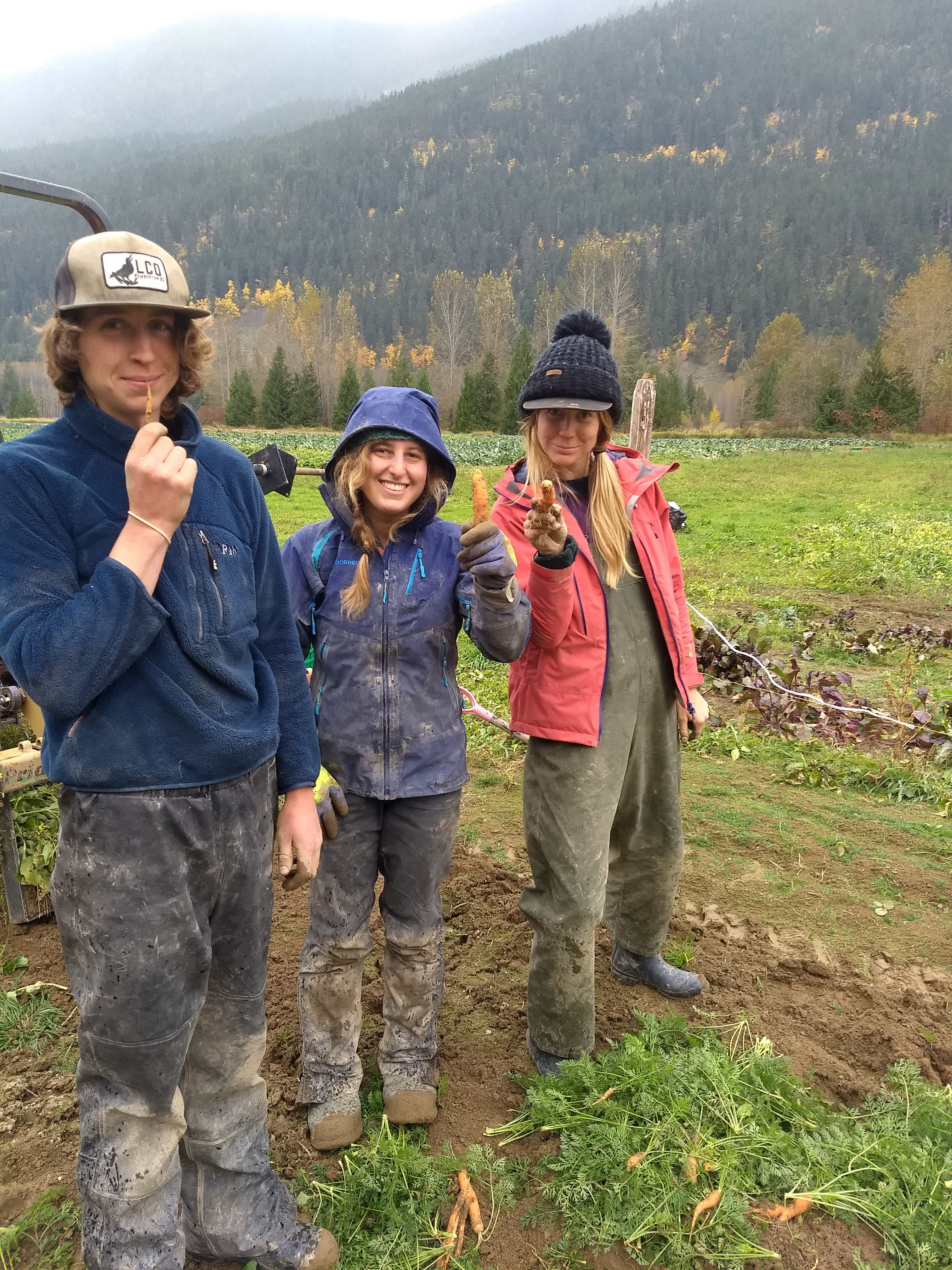 laughing crow organics, farm jobs, pemberton