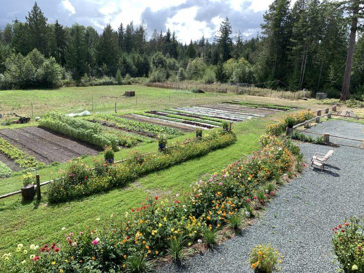 nourish farm, qualicum beach, vancouver island, bc, farm job