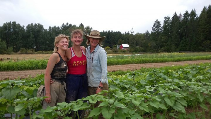 green fire farm, cowichan valley, farm job