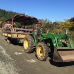 FARM JOB: DUNCAN, BC – Providence Farm