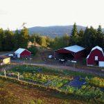 LAND OPPORTUNITY: Organic Market Garden Business Lease Opportunity – Salt Spring Island, BC