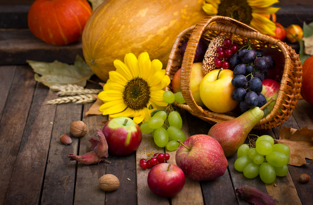 Autumn harvest - fresh fruits in the basket, the beauty path, nelson, apprenticeship, internship