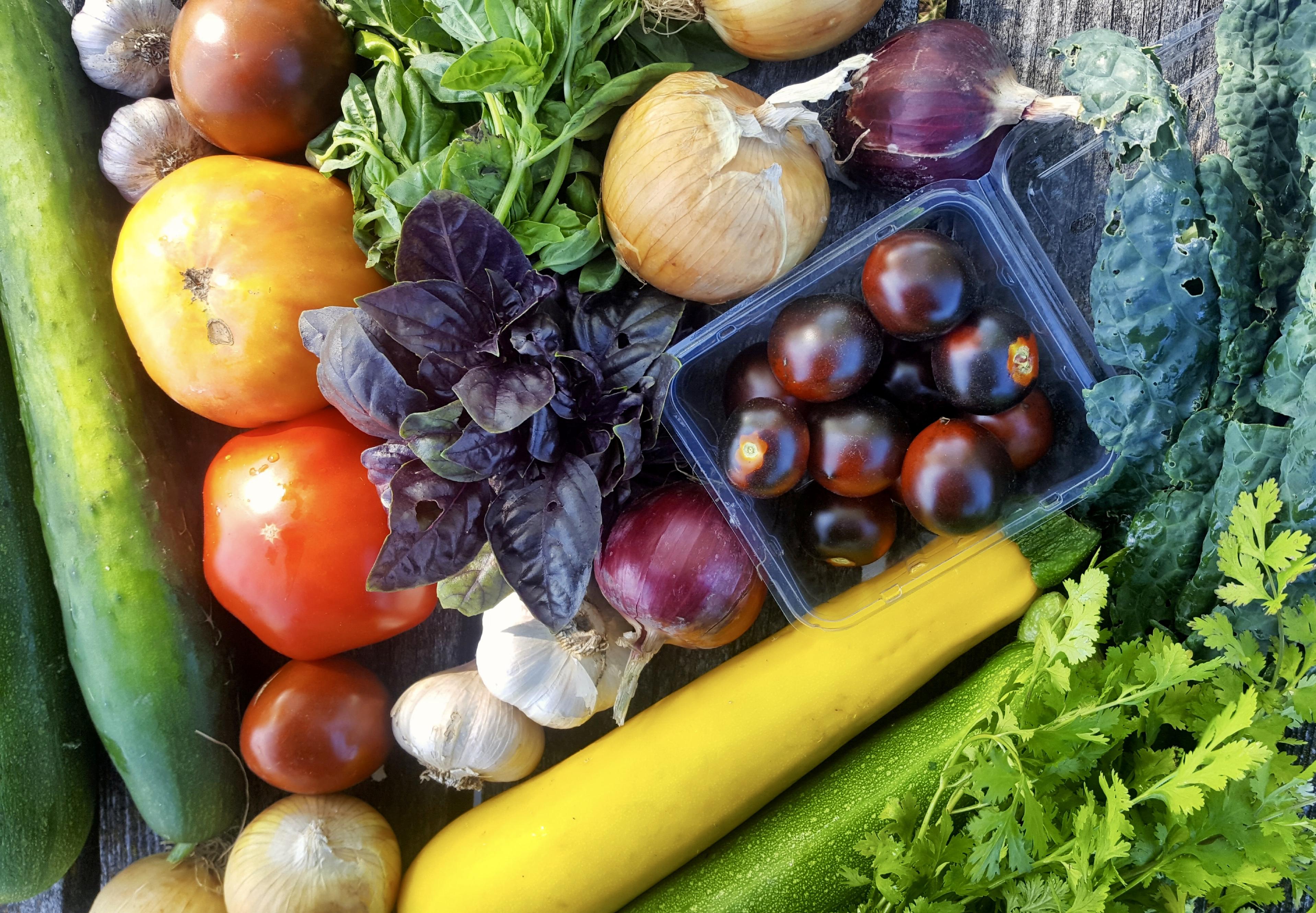 heart acres farm, winnipeg, farm job, greenhouse manager