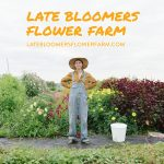 B.C. Business Mentorship Network – Late Bloomers Flower Farm