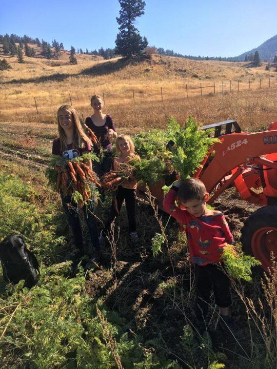 Garnett Hollow Organic Farm, farm job, summerland, okanagan