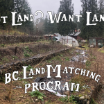 FILLED – LAND OPPORTUNITY: Raised beds, greenhouse and potting shed for lease – Cowichan Station, BC