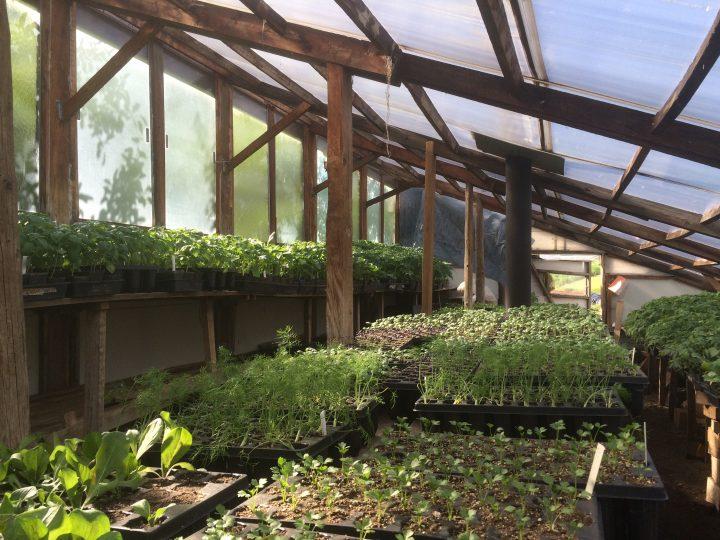 Off grid greenhouse.
