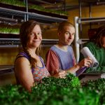 FARM APPRENTICESHIPS: NELSON, BC – Chuckleberry Farm
