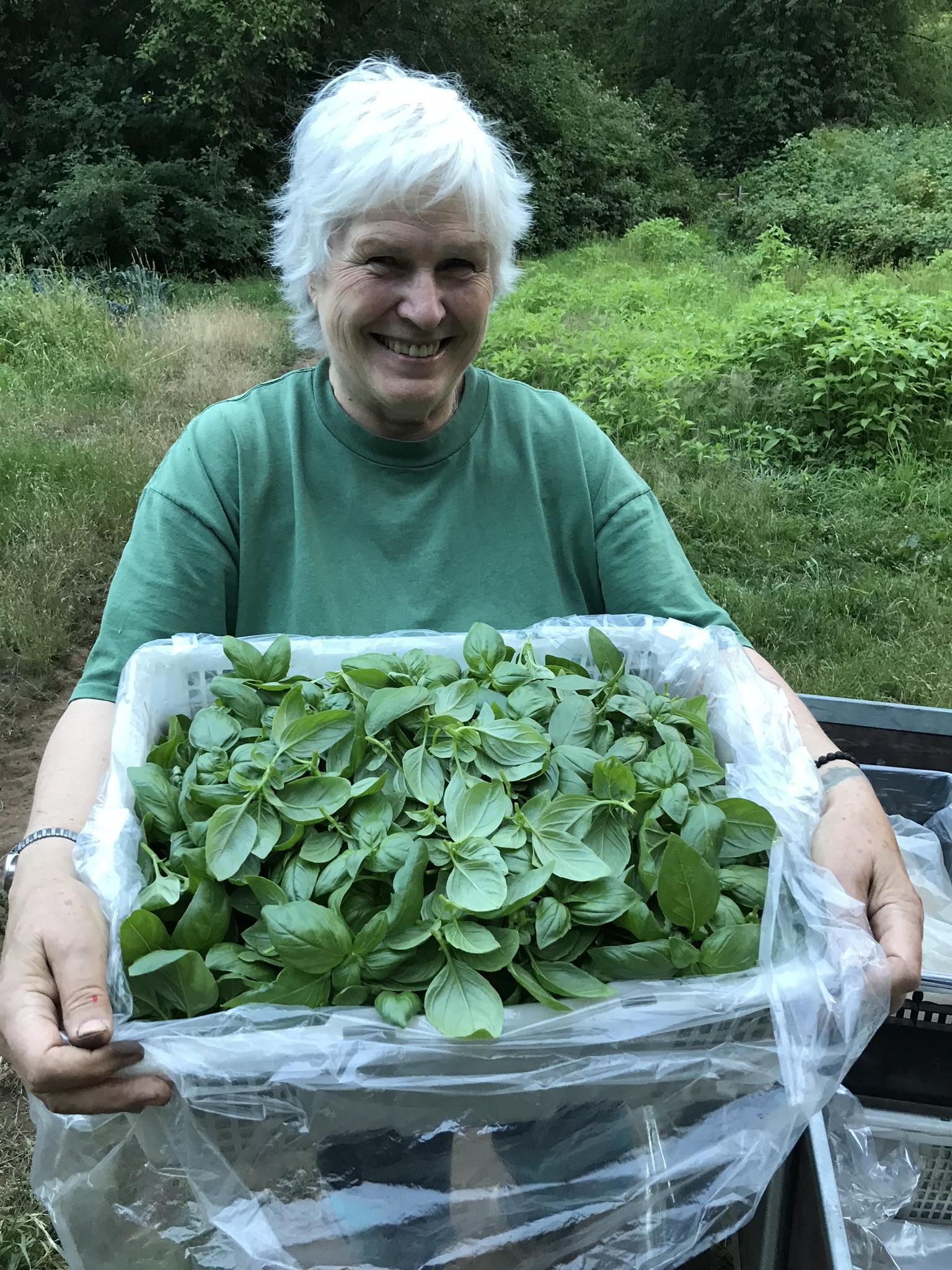 glorious organics, aldergrove, farm job, vancouver
