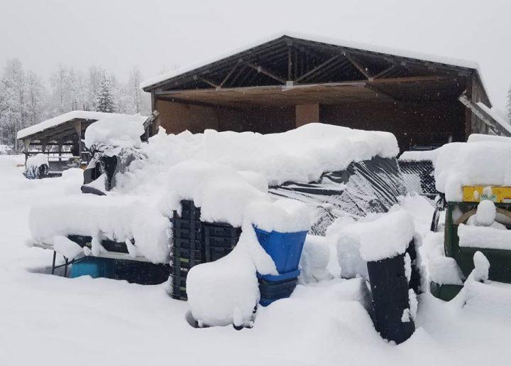 Winter in the Kootenays!