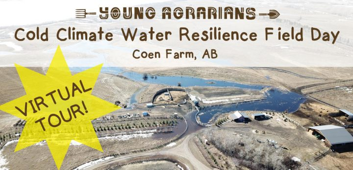 coen farm, permaculture, tour, young agrarians