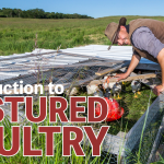 POSTPONED: APR 4, 2020: CLEARWATER, MB – Introduction to Pastured Poultry Workshop