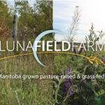 Farm Job: Luna Field Farm: Farm Hand, Belmont, MB