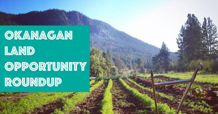 Okanagan, land, land matching, okanagan, naramata, lumby, salmon arm, kelowna, vinsulla, young agrarians