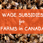 Wage Subsidy Programs for Farms in Canada