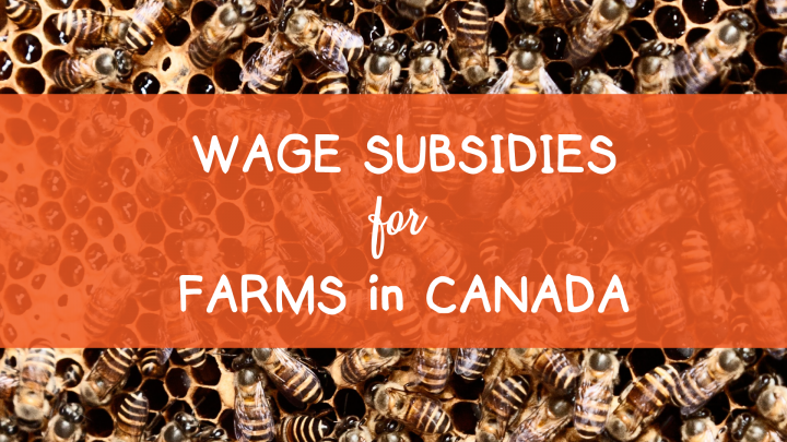 Wage Subsidies for Farms in Canada