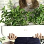FARM JOB: AVA Byte – Smart Indoor Gardens: Grower/Horticulturist, Vancouver, BC
