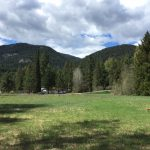 LAND OPPORTUNITY: Space for tiny home on permaculture farm in development, Winlaw BC