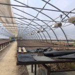 LAND OPPORTUNITY: Greenhouses and Cold Frames for Long Term Lease – North Saanich, BC