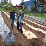 FARM JOB: LILLOOET, BC – Seed to Culture, Farm and Ferment Assistant