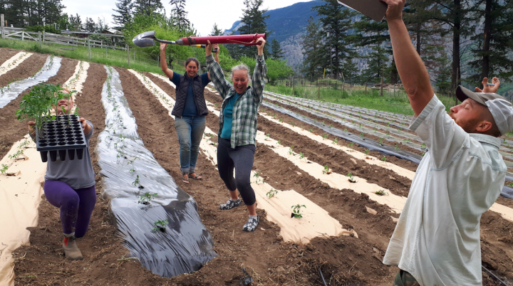 Seed to culture farm job fermentation lillooet