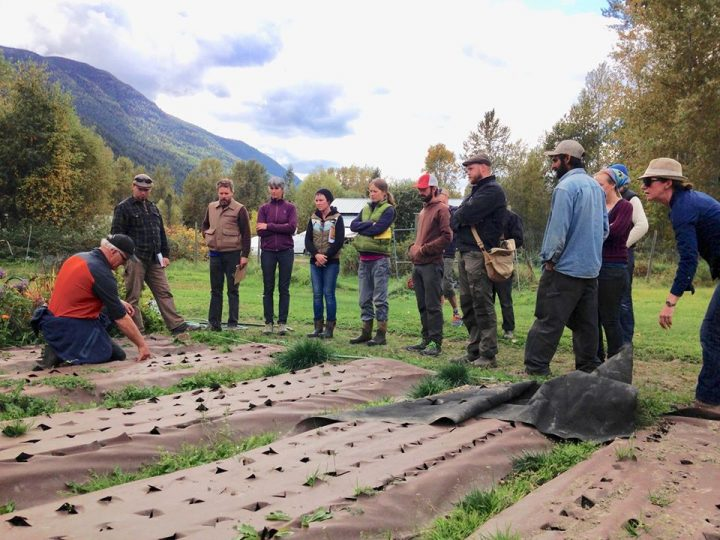kootenay boundary farm advisors job