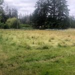 FILLED – LAND OPPORTUNITY: Half Acre Field Available on Mixed Farm – Metchosin, BC