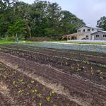 FARM JOB: METCHOSIN, BC – Farm Hand, Wind Whipped Farm