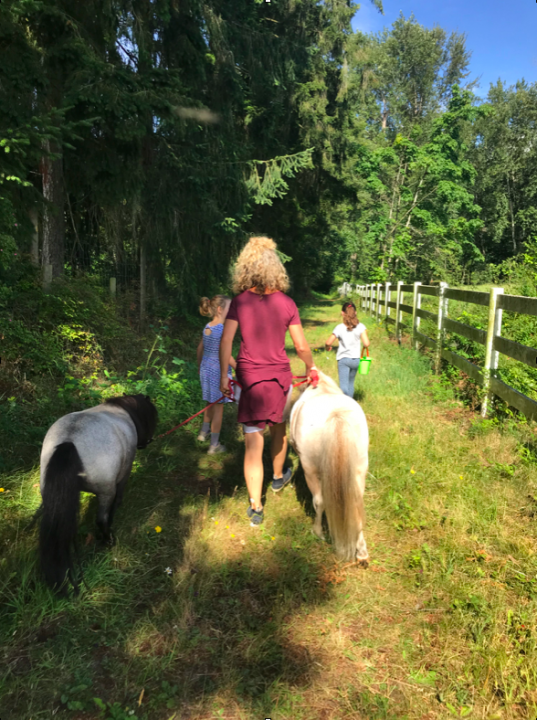 walking with farmkids occupational therapy