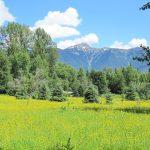 LAND OPPORTUNITY: Space for farming families to pursue crop and livestock production, Kakwa Ecovillage, Dome Creek BC