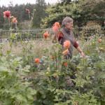 Farm Legacy Letters: Mary Alice Johnson, ALM Farm