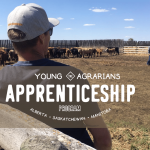 Call for Mentors: Young Agrarians Apprenticeship Program