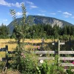 LAND OPPORTUNITY: 3 acres for Organic Farming in Salmon Arm, BC