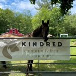 KINDRED FARM SANCTUARY IS LOOKING FOR A NEW HOME: SURREY, BC