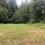 LAND OPPORTUNITY: Quarter Acre Field for Farm Use – Cobble Hill, BC