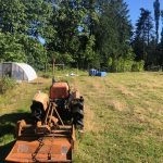 LAND OPPORTUNITY: 80 Acres of Fields and Forest Looking for Farming Collaborators – Black Creek, BC