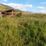 LAND OPPORTUNITY: 20 acres of fenced pasture near McBride, BC