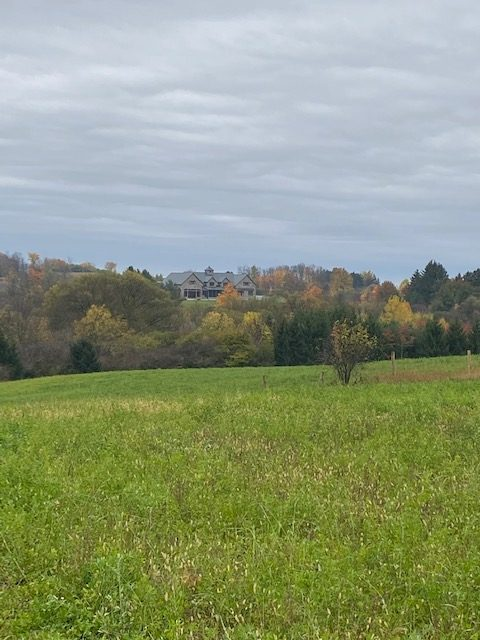 boone run farm