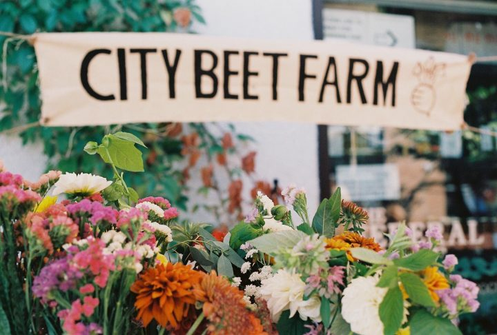 city beet farm sale