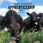 YA APPRENTICESHIP 2021: Bangor, SK – Richards Family Farm