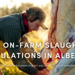 Dec 3: WEBINAR – New On-Farm Slaughter Regulations in Alberta