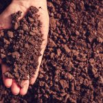 SURVEY: Soil Quality, Farmer Health, and Product Quality