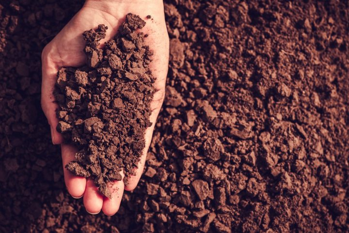 Soil Quality, Farmer Health, and Product Quality
