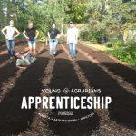 YA APPRENTICESHIP 2021: Calgary, AB – Dirtboys Urban Farming