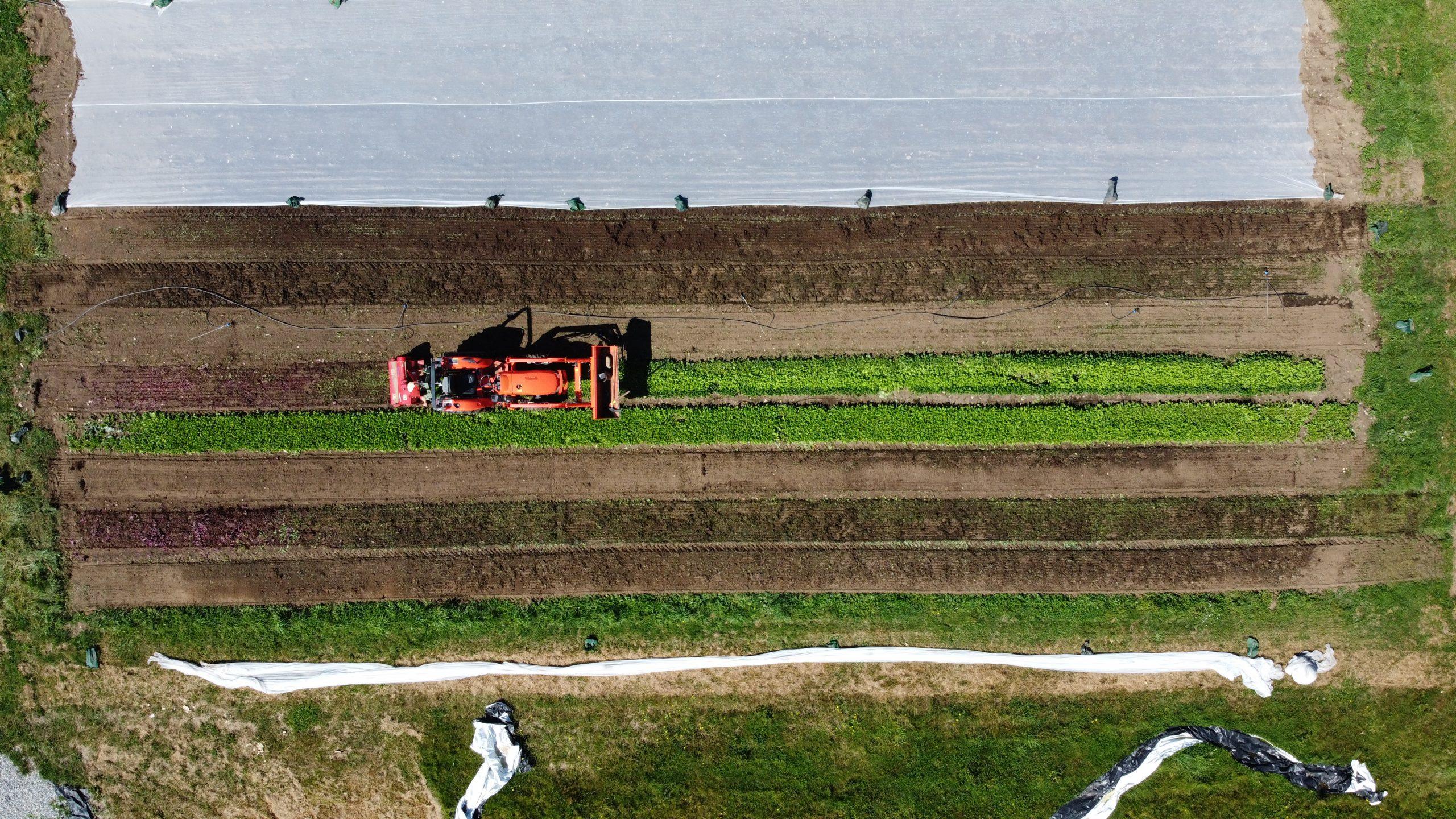 Zaklan Heritage Farm, surrey, vancouver