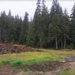 LAND OPPORTUNITY: 10 acres of cleared river valley land near Terrace, BC