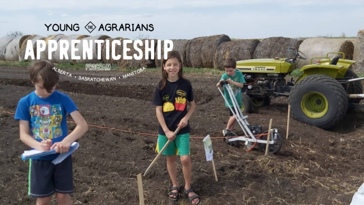 Photo of Grovenland farm apprenticeship