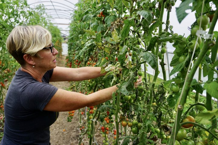 kpu farm school job tsawwassen