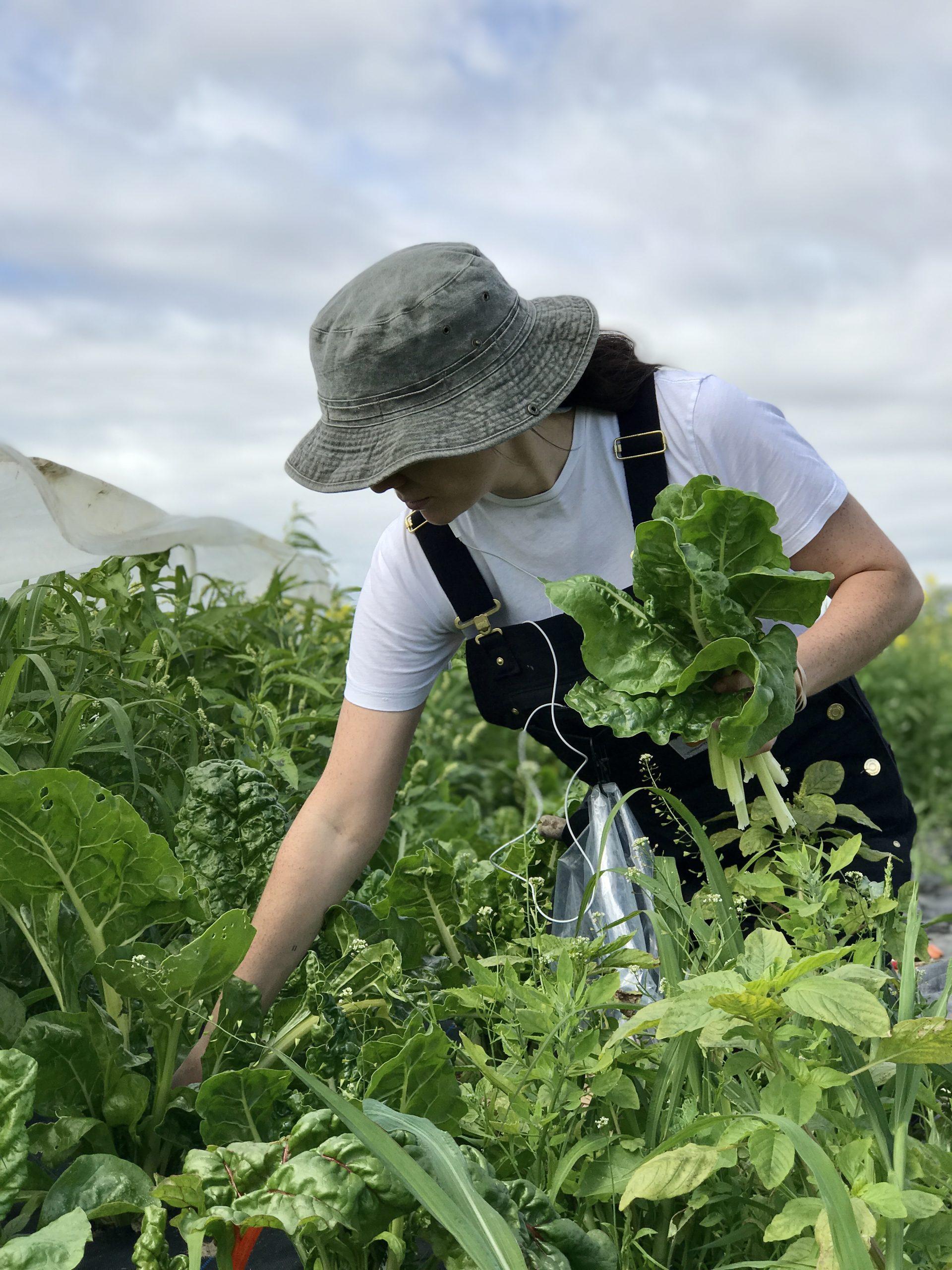 kpu farm school job tsawwassen